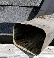 Gutter Cleaning Services Rochester BEFORE